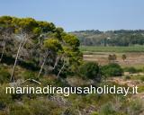 Casa Vacanze Marina di Ragusa - Riserva Pino Daleppo - foto #0